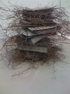 nearlya:     Anselm Kiefer,  Tannhäuser.  In similar concept with Goldsworthy.  K.W.