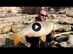 Share who love Carp Fishing (Y) #bassfishing  #fisheries  #fishingshop  #fishingtackleshop  #fishinghook  #lure  #reel  #fishingstore  #go fishing  #walleyefishing  #huntingandfishing  #bait  #tackle  #angler  #saltwater  #baitandtackle  #fising  #carpfish  #shimanofishing  #deepseafishing  #jig  #fishingknots  #livebait