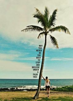 Breath under a palm tree