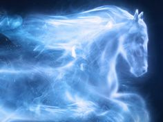 Your patronus would be a horse. The same patronus as Ginny Weasley. You are brave and kind and very attractive....ok..I won't argue with that