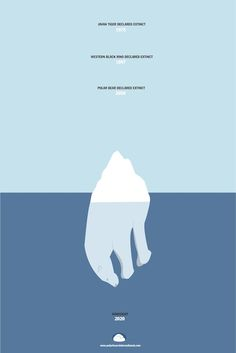 This image illustrates how Global Warming is affecting wildlife in a negative way. As the iceberg melts (due to the warming temperature) it shows how more species are becoming extinct. It also predicts 2050 as the year polar bears become extinct if we do not change. This image is targeted at all ages because Global Warming is a phenomena that affects us all and conveys the consequences of the Earth's rising temperature due to mostly human activities.