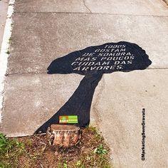 Todos gostam de Sombra mas poucos cuidam das Árvores! Ação da Fundação Amazonas Sustentável Agência: Mood São Paulo