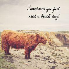 Sometimes you just need a beach day!  #justaway #travel #quotes #genießen #enjoy #beach #justawaycom #urlaub #ferien #reisen