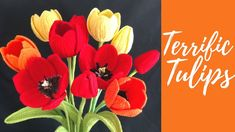 Как крючком тюльпаны Fleur Crochet, Single Crochet, Diy Crochet, Crochet Baby, Crochet Flower Tutorial, Crochet Flowers, Flower Video, Crochet Videos, Flower Patterns