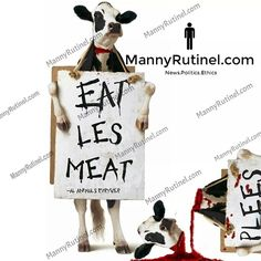 I've always thought the Chick-fil-A cows wanted to spread a more vegan-friendly message. So I made it happen with a little help from Photoshop. Let me know what you guys think.☺ #Vegan #VegansOfIG #Vegetarian #Animals