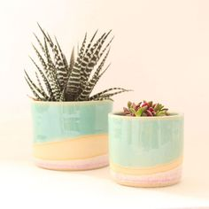 Bathroom Without Windows, Ceramic Planters, Planter Pots, The Light Is Coming, Bathroom Plants, Lucky Bamboo, Fire Clay, Cool Plants, Hanging Planters