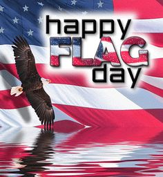 flag day of usa