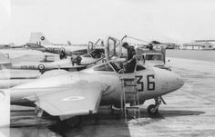 Completing a before flight servicing on Vampire aircraft at East Sale 1963