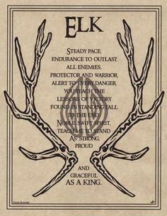 ELK PRAYER - POSTER  Wicca Pagan Witch Witchcraft Goth BOOK OF SHADOWS TOTEM FOR SALE • $3.75 • See Photos! Money Back Guarantee. WICCAN - WITCHCRAFT- PAGAN POSTERS 'Elk Prayer' This is a Beautiful Poster Printed on Parchment Paper 8 1/2 x 11 inches or 22 x 28 cms A great reference to 190715750424