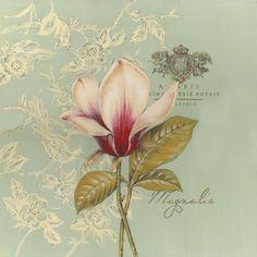 Magnolia pic ★