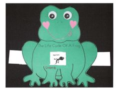 Life cycle of a frog slider. Free template. Quick & easy science center.