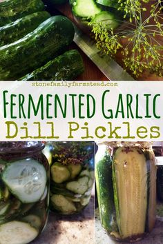 Think you can't make dill pickles? Try my fermented garlic dill pickles recipe and be eating them aside your favorite summer lunch inside of a week! Making Dill Pickles, Garlic Dill Pickles, Best Pickles, Pickled Garlic, Homemade Pickles, Dill Recipes, Beer Recipes, Canning Recipes, Sauces