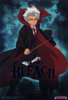 Bleach X Harry Potter, from the looks of things. Love Toshiro