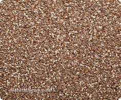 Chia seeds contain 7.5 times the omega-3 content of salmon, as well as the highest protein content of any edible seed