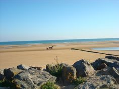Omaha beach, France D Day Normandy, Normandy France, Places To See, Places Ive Been, Ww2, Spaces, History, Beach, Water