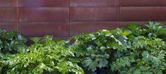 Andrea Cochran Landscape Architect, San Fransisco   Stone Edge Farm   Project Gallery#12