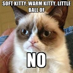 I had fun once It was terrible - Grumpy Cat 1 | Meme Generator