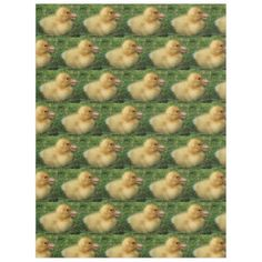 farm animal little duckling natural blanket -nature diy customize sprecial design