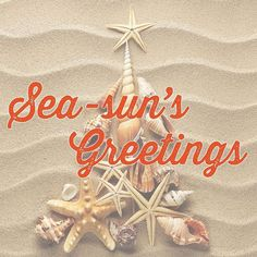 And tide-ings of comfort and joy- Perfect for an Aussie Christmas Tropical Christmas, Beach Christmas, Coastal Christmas, Christmas Tea, Christmas Quotes, Christmas In July, Christmas Crafts, Christmas Decorations, Christmas Ornaments