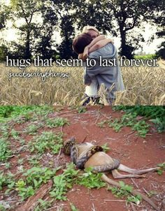 Dont we all just love hugs Love Hug, Just Love, Funny Things, Funny Stuff, Reasons To Be Happy, Funny Memes, Hilarious, Ball Python, Hugs