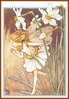 Illustration for the Narcissus Fairy from Flower Fairies of the Garden. A girl fairy runs from a group of narcissus on the right, with her hand raised, calling out. Author / Illustrator Cicely Mary Barker A young Alondra, I think Cicely Mary Barker, Flower Fairies, Fairies Garden, Fantasy Magic, Fantasy Art, Illustrator, Narcissus Flower, Fairy Pictures, Vintage Fairies