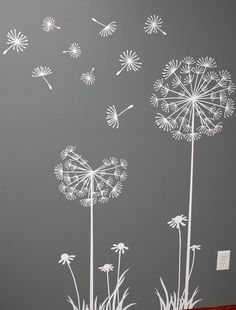 White dandelions on a gray wall