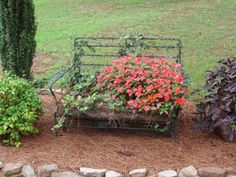 Want something different for your front lawn or garden? Use an iron chair or glider and fill it with ivy and flowers. My husband put some wooden sides on it and I lined the bottom with coconut liners. I filled the bottom with several inches of potting soil and planted away topping off with pine straw. Every year I try a new plants for variety.
