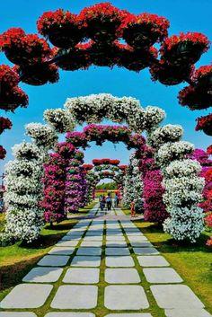 Wallpaper Nature Flowers, Beautiful Landscape Wallpaper, Beautiful Landscapes, Beautiful Flowers Garden, Beautiful Roses, Dream Garden, Garden Art, Front Yard Garden Design, Miracle Garden