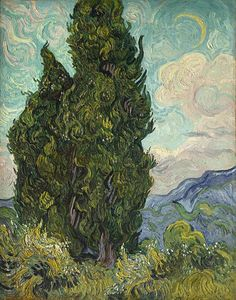 Cypresses, by Vincent Van Gogh, Dutch Post-Impressionist, oil on canvas. Van Gogh described the cypress as the dark patch in a sun-drenched landscape. It was shown in the Salon des Independents Art Van, Van Gogh Art, Vincent Van Gogh, Monet, Van Gogh Pinturas, Oil Canvas, Canvas Art, Painting Canvas, Canvas Size