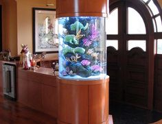 Creative Aquarium Room Divider Design 608x467 Custom Aquariums Ideas for Your Modern Home Interior Decoration