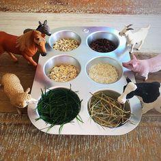Best Indoor Garden Ideas for 2020 - Modern Nursery Activities, Farm Activities, Animal Activities, Montessori Activities, Preschool Activities, Farm Animals Preschool, Farm Animal Crafts, Farm Crafts, Preschool Crafts