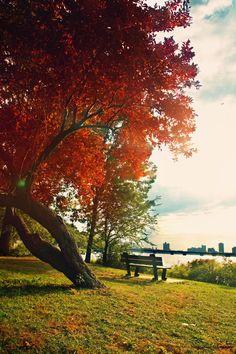Prelude to Autumn