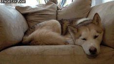 Do you mind if I sleep here, bro?