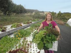 Free Downloads for your DIY Aquaponics System! The Business Of Aquaponics!