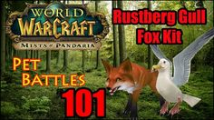 awesome WoW Pet Battles 101 - Rare Pets - Rustberg Gull and Fox Kit