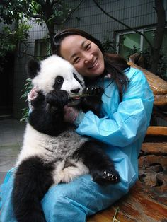 Giant Panda Breeding Research Base (Xiongmao Jidi) - You can hold a baby panda!