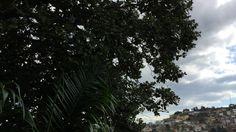 Ventando: Tiguera 360. Juiz de Fora, Minas Gerais, Brasil. IMG_3034. 77,...
