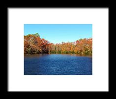 Water Framed Print featuring the photograph Beautiful Lake by Cynthia Guinn