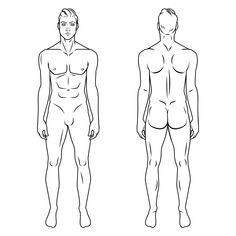 Man Body Model Front And Back Human Poses Male Silhouette Anatomy Vector Illustration Poster Template Adult Beach
