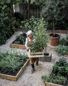 Raised Beds with gravel between How to Build a Raised Vegetable Garden Bed 39 Simple Cheap Raised Vegetable Garden Bed Ideas Gravel Garden, Potager Garden, Veg Garden, Vegetable Garden Design, Edible Garden, Garden Cottage, Garden Landscaping, Gravel Walkway, Landscaping Ideas