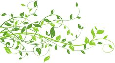 Spring Decor with Leaves PNG Clip Art Image
