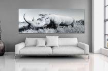 Interior :: Obraz szklany dekoracyjny Rhino 60x160cm (Z30135)