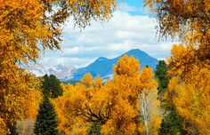 durango in the fall | the durango area has the arguably the best fall colors in the rockies ...