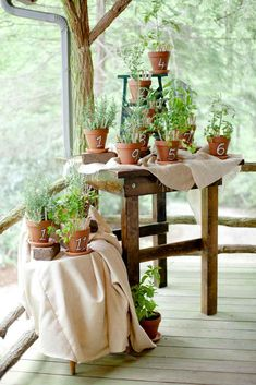 7 Ways to Up Your Wedding Décor With Herbs | TheKnot.com