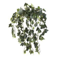 19'' Dark ivy gala hanging bush Green Plants, Artificial Plants, Houseplants, Ivy, Greenery, Decoration, Herbs, Dark, Products