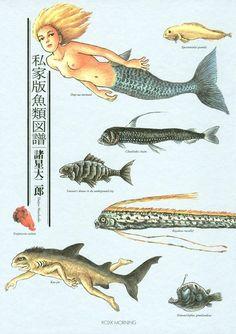私家版魚類図譜 諸星大二郎 講談社