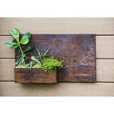 Evergreen Enterprises, Inc Rectangular Wall Planter
