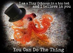 Hipster animals believe in you! [Tiny, orange octopus in a black top hat] [Top right corner text in white letters] I am a tiny octopus in a top hat and I believe in you. You Can Do, Believe In You, Tiny Octopus, Little Gentleman, True Gentleman, Wonderwall, Wet And Dry, True Words, Pet Birds