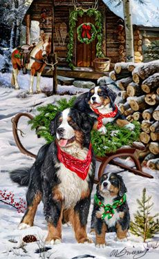 Bernese Mountain Dog Christmas Camp Christmas Cards - by Margaret Sweeney Christmas Scenes, Christmas Animals, Christmas Cats, Christmas Pictures, Christmas Greetings, Christmas Holiday, Holiday Cards, Cowboy Christmas, Country Christmas