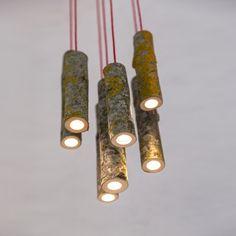 """Les """"Bio Mass Lights"""" sont de petites suspensions à Led imaginées par le designer anglais Jay Watson. Insérées dans de petites tiges de bois..."""